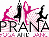 A DAY OF HOLISTIC WELLNESS FOR A CAUSE at Prana Yoga and Dance on Saturday, September 23rd from 8:00 a.m. – noon