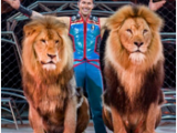 Ringling Bros. Out Of This World is Coming to Columbus & Cleveland!