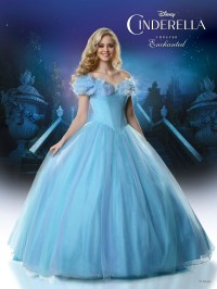 Introducing the 2015 Disney Forever Enchanted Cinderella ...