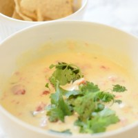 Easy White Queso Recipe