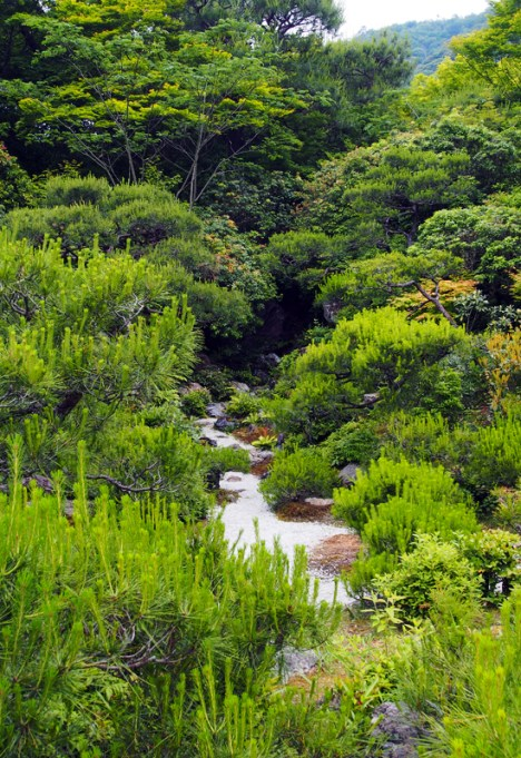 """I really liked how everything was planted to resemble miniature mountains with a """"river"""" running through them"""