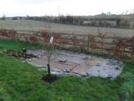 Apple tree winter year 2 before pruning.