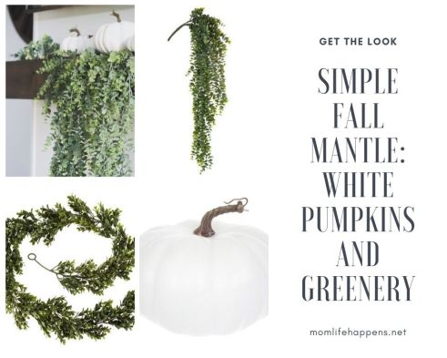 Shop the look for simple fall mantle