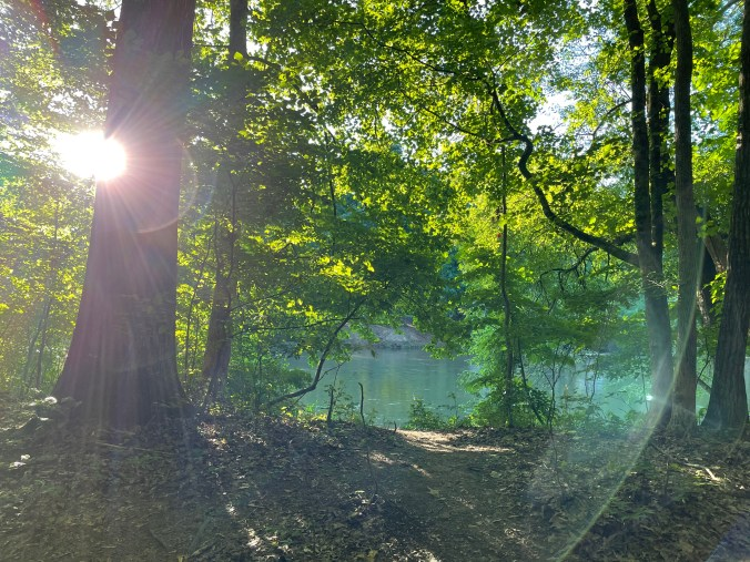 trees with sunlight shining through and Chatahoochee River in background