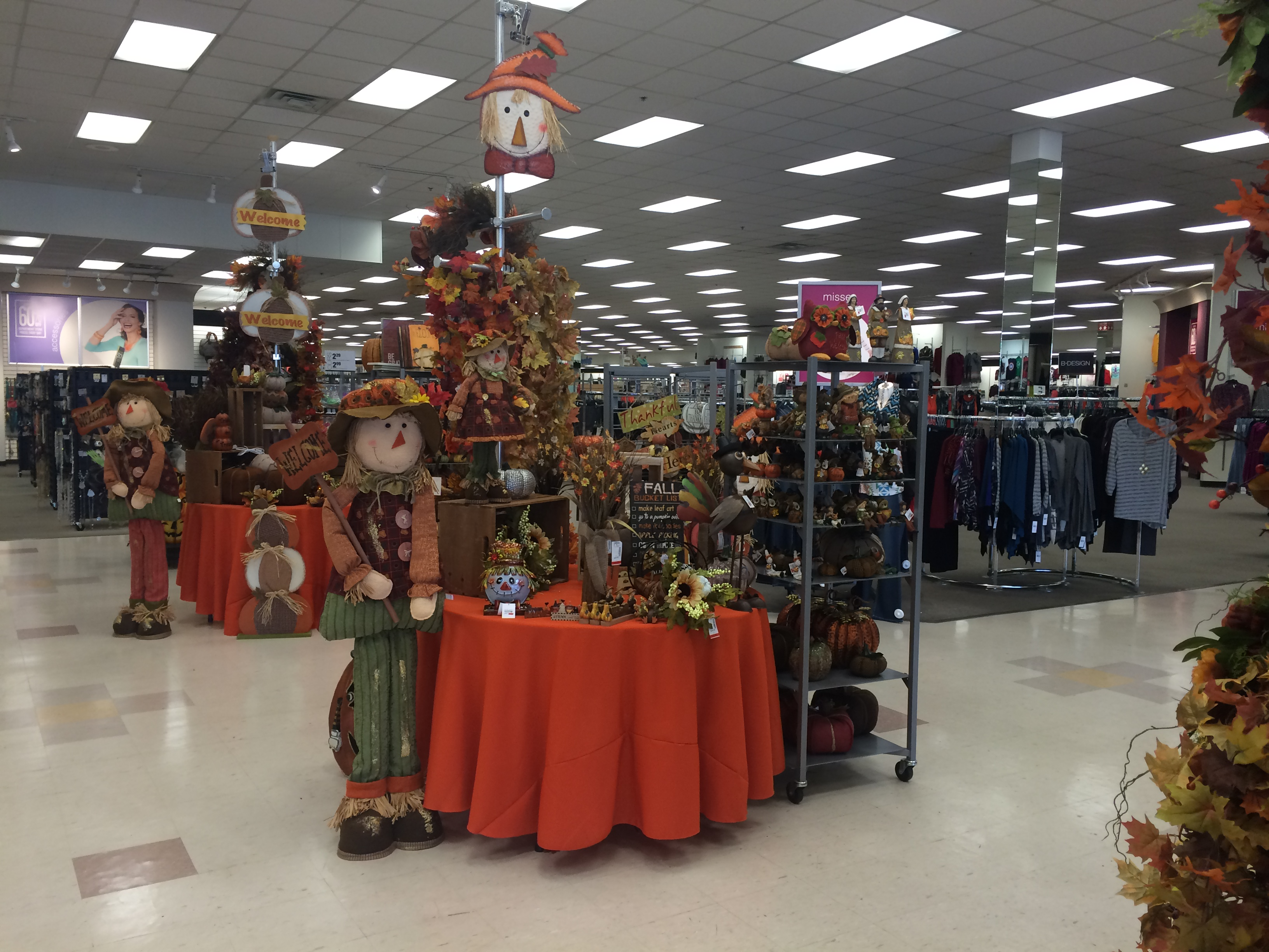 So excited for halloween and diy projects!!!! Find Your Fall Style At Gordmans