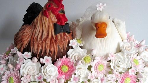 認識H7N9禽流感,不吃未熟蛋,不接近禽鳥 1