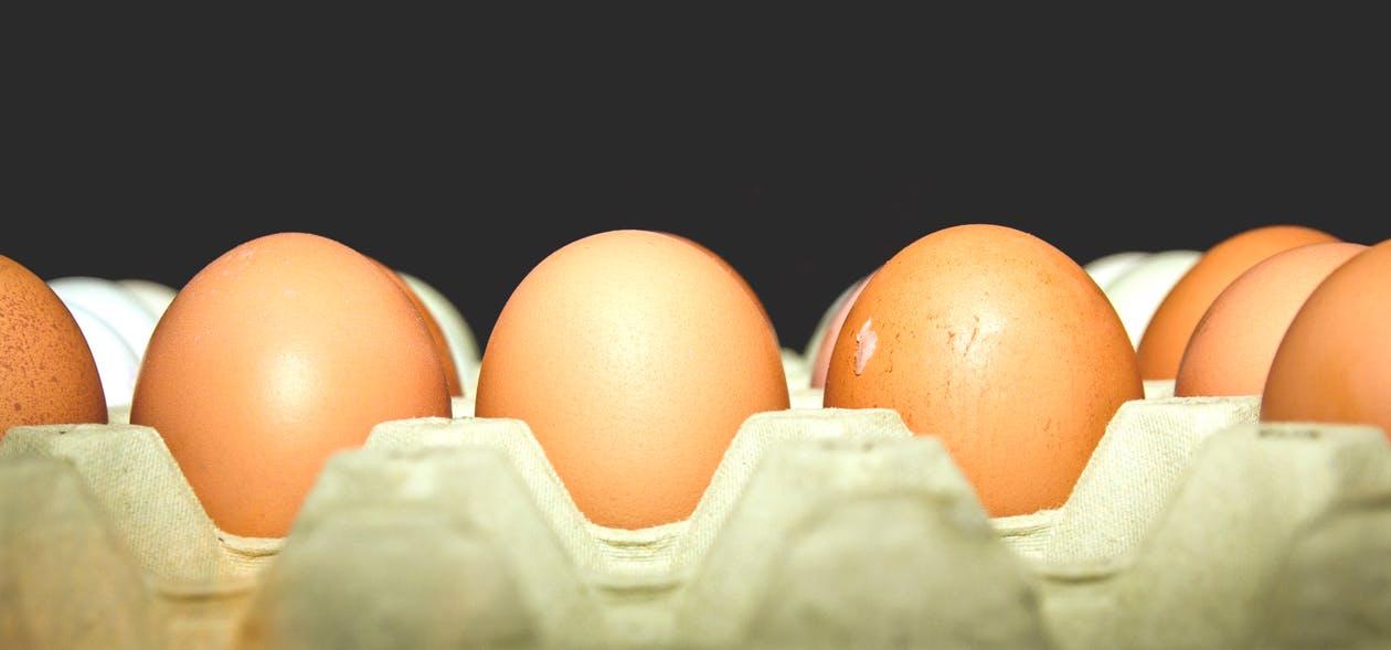 食藥署查獲戴奧辛雞蛋
