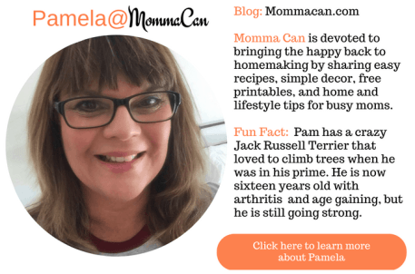 Meet Pam @ Create and Celebrate Celebrate your blog today!