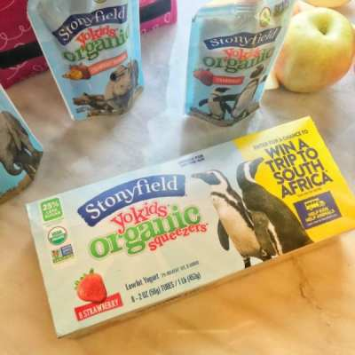 School Lunches for Picky Eaters