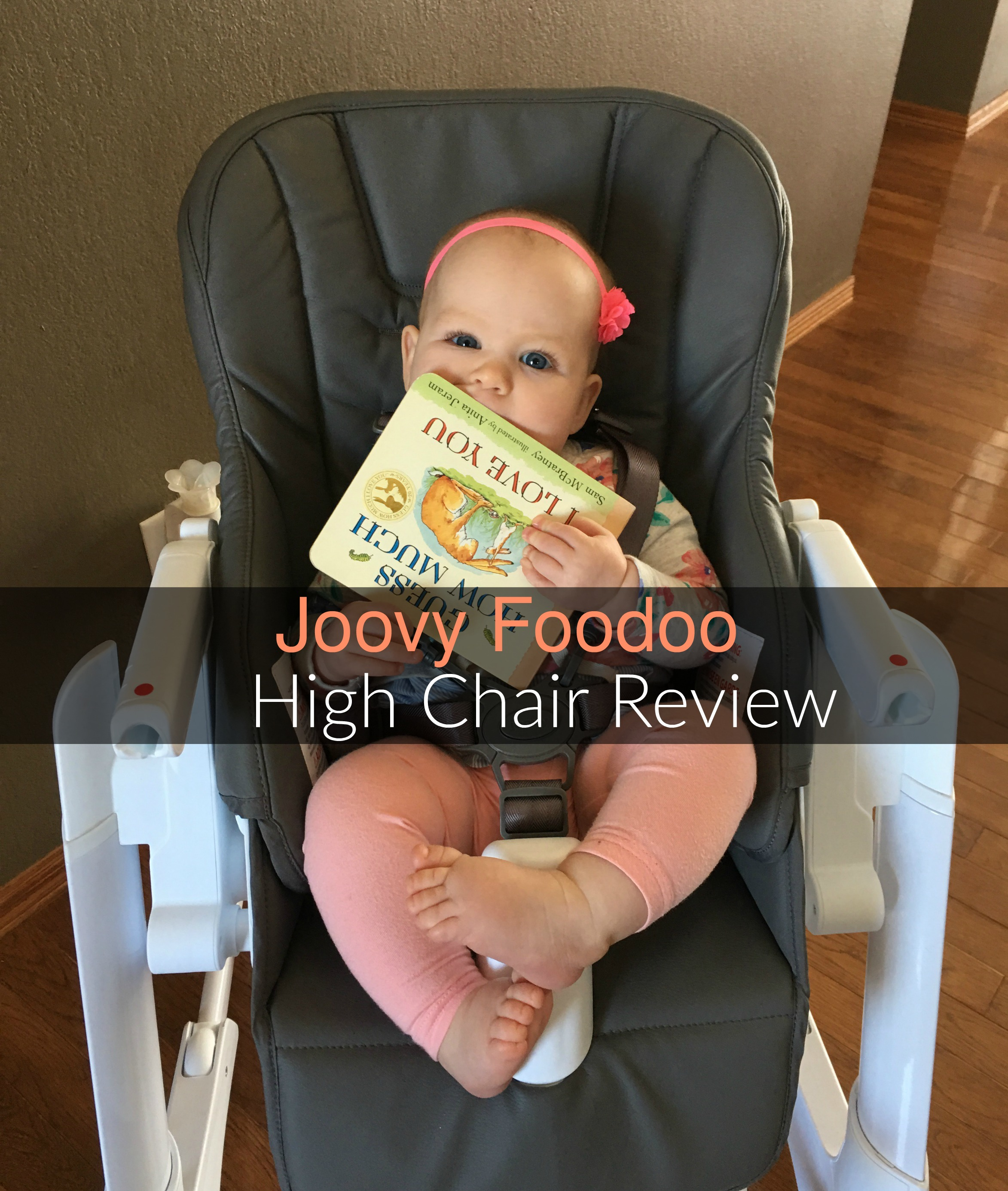 high chairs canada reviews bamboo wicker chair joovy foodoo review momma in flip flops