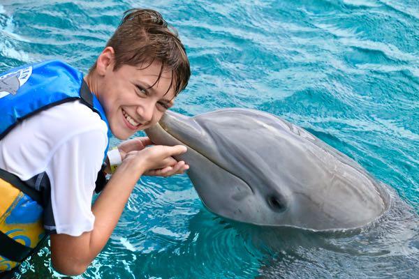 Sam_dolphin