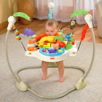 5 Best Baby ExerSaucer
