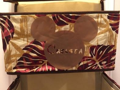 Moana Fish Extender Mickey Head Pocket 2