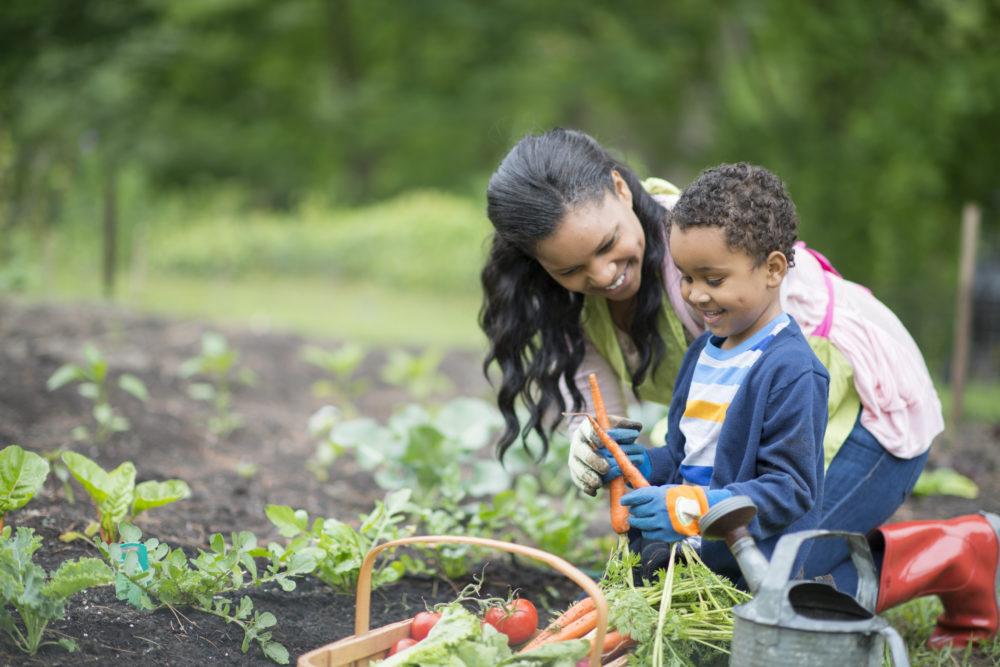 Black Kids Gardening - Summer Activities Bucklist - Mommination