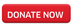 This image has an empty alt attribute; its file name is donate_button_red-300x115.png