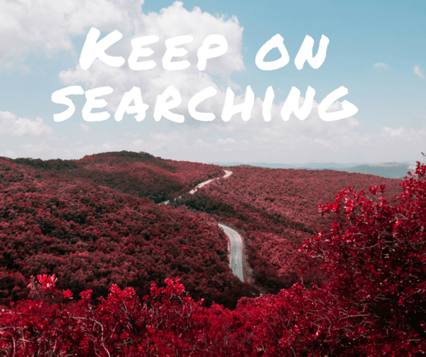 Keep on searching