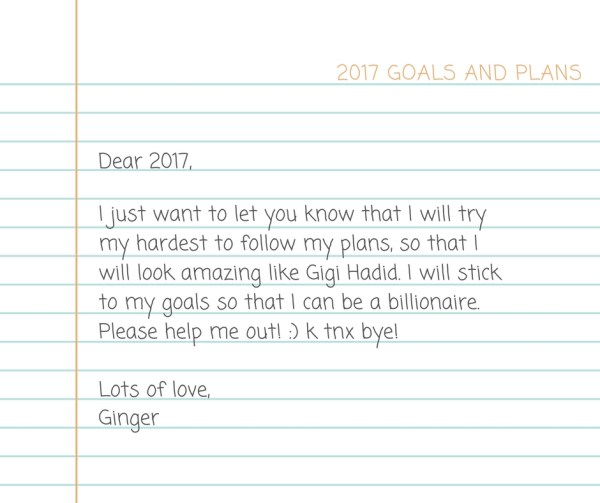 goals-and-plans-2017