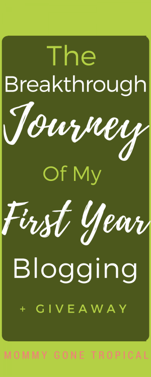 Journey of my first year blogging