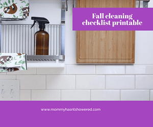 fall cleaning checklist printable