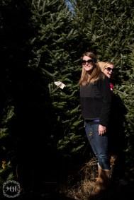 ChristmasTrees-10