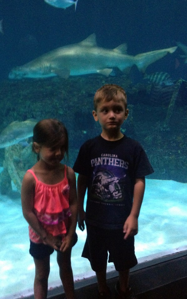 Charlie and Maddie at the aquarium.  Behind them is an actual shipwreck that has been moved into their saltwater tank.  There were huge sharks swimming in there!