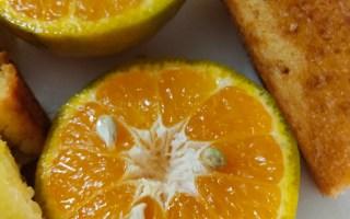 Delicious and Eggless Orange Cake Recipe which can also be used to make Orange Muffins #orangecake #baking #bakingwithkids #cakebake #orange