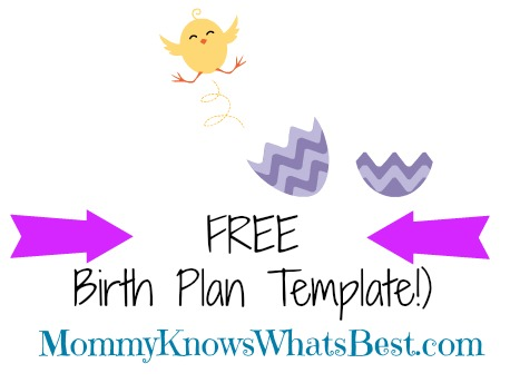 free birth plan template