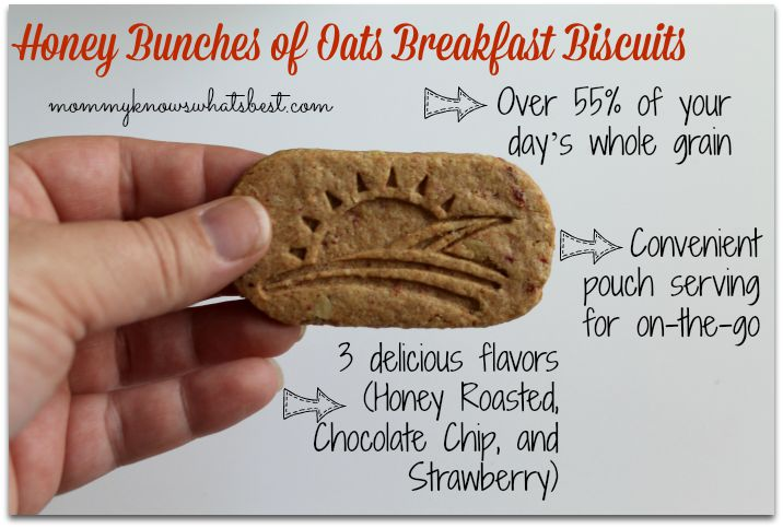 breakfast biscuits