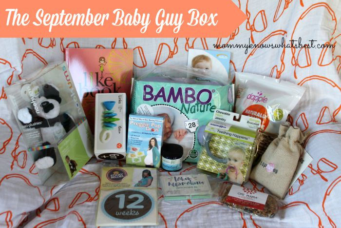 Baby Guy Box Review