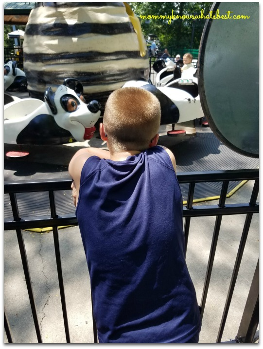 what age is dutch wonderland for