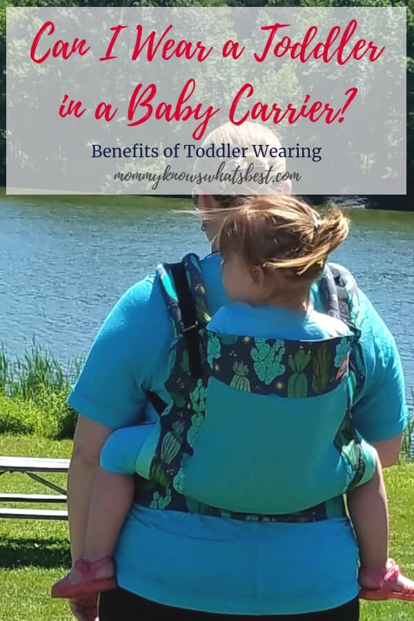 Can I Wear a Toddler in a Baby Carrier Best Carriers for Toddlers