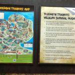 Day4: Singapore Zoo and River Safari Trip