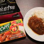 Super Easy Japanese Pork Cutlet (Tonkatsu) With Curry Recipe