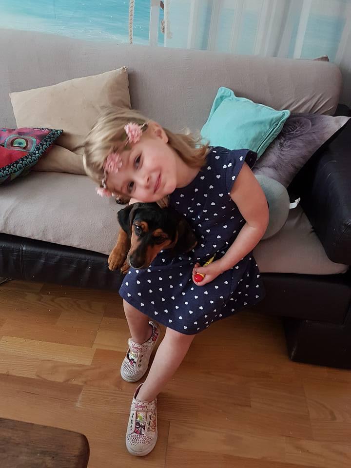 Een hond in het gezin; waarom wel of niet?