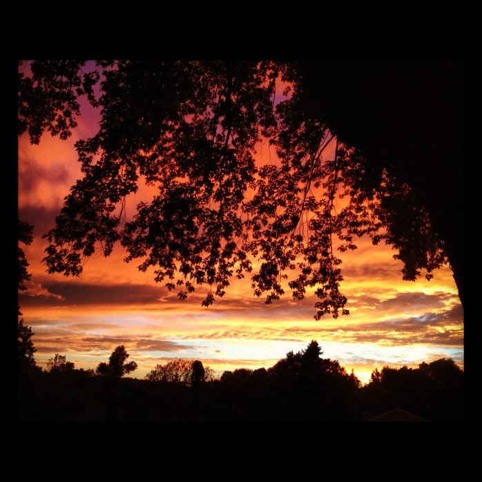 Sensational Sunsets: Kalamazoo, Mi