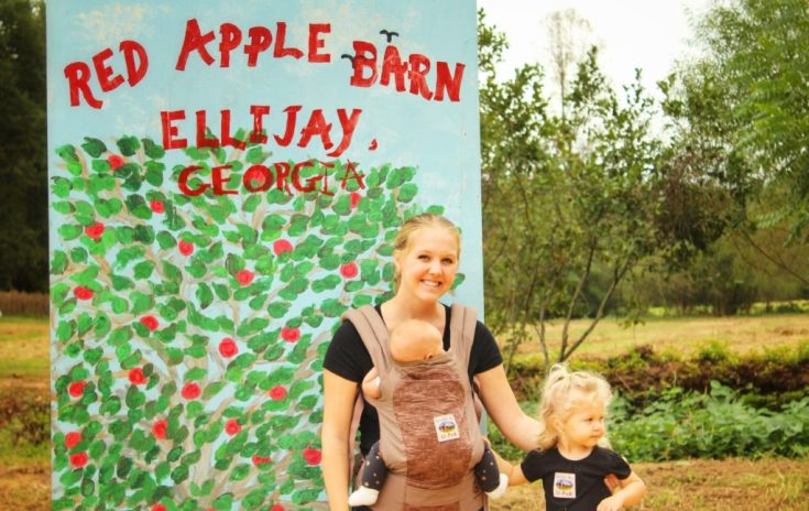 Apple Picking at Big Apple Barn Ellijay, GA