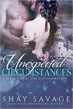 Unexpected Circumstance Book 3 The Consummation by Shay Savage