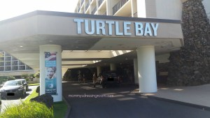 turtle bay