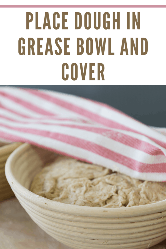place dough in greased bowl and cover