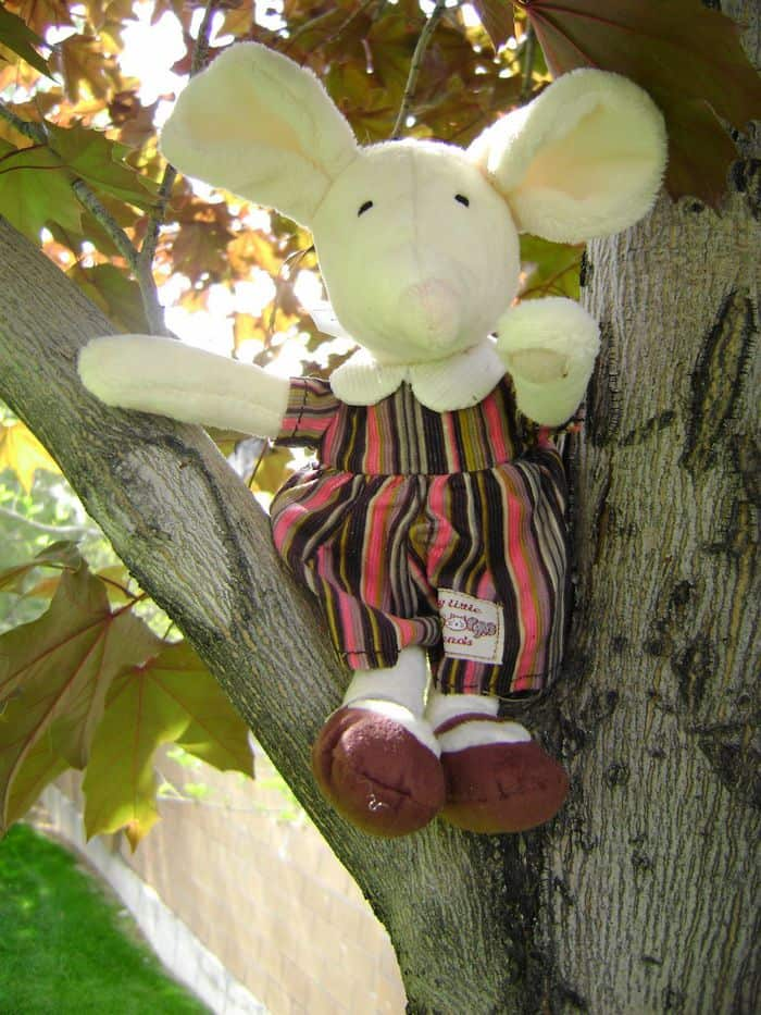 jelly cat mouse plush in tree