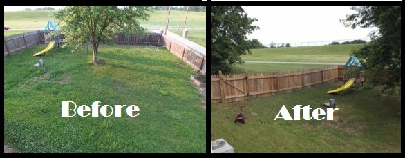 Fence Before and Fence After Pressure Cleaning