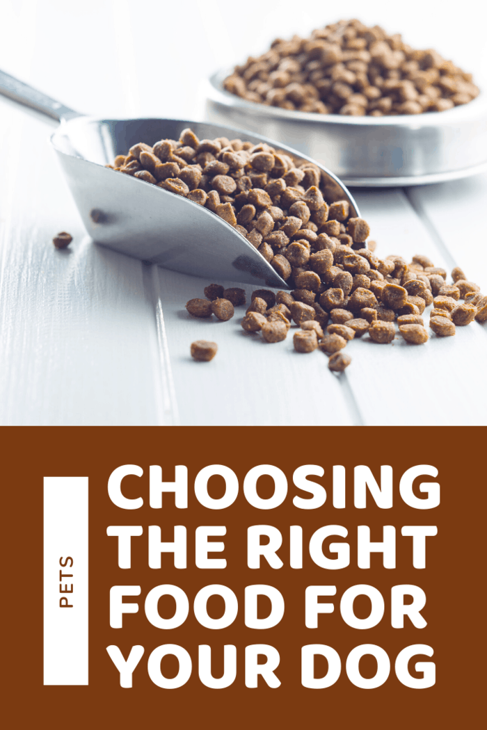 When it comes to dog nutrition, just as in the case of human food, some brands deposit more effort to offer high-quality food than others, this means that some dog food brands will invest more in research and will do their best to come up with their own formula.