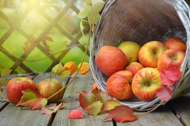 apple 8 Foods To Eat If You Have Gum Disease
