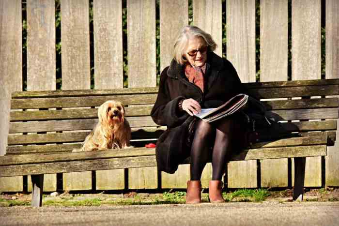 Activities for Seniors that Will Keep Them Active