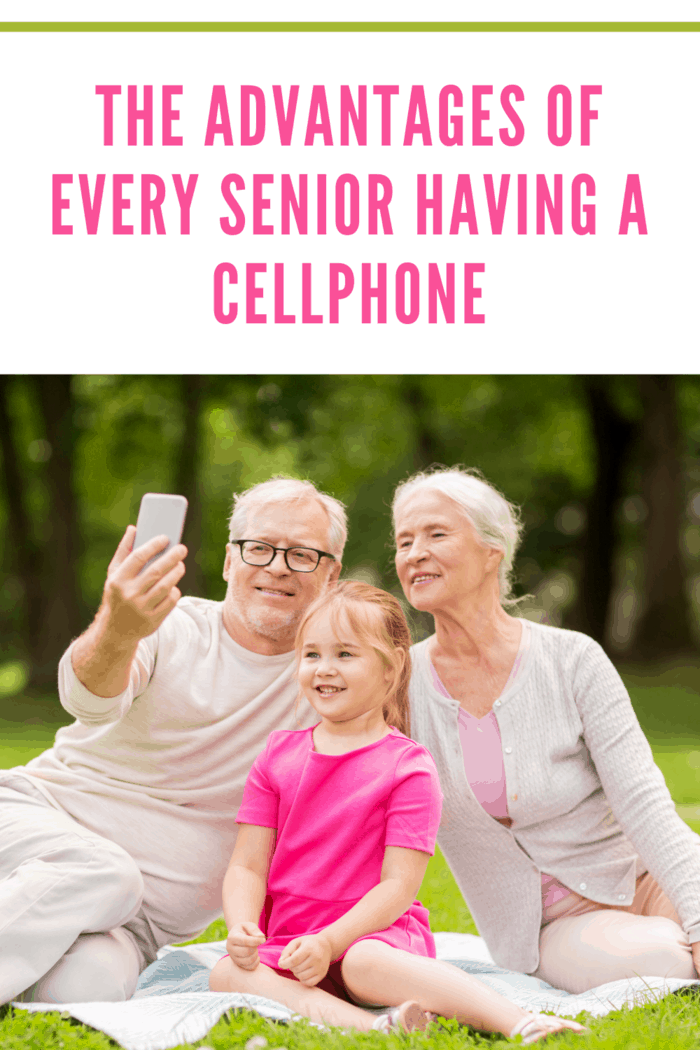 family, generation and people concept - happy smiling grandmother, grandfather and little granddaughter taking selfie by smartphone at park depicting advantages of seniors having a cellphone