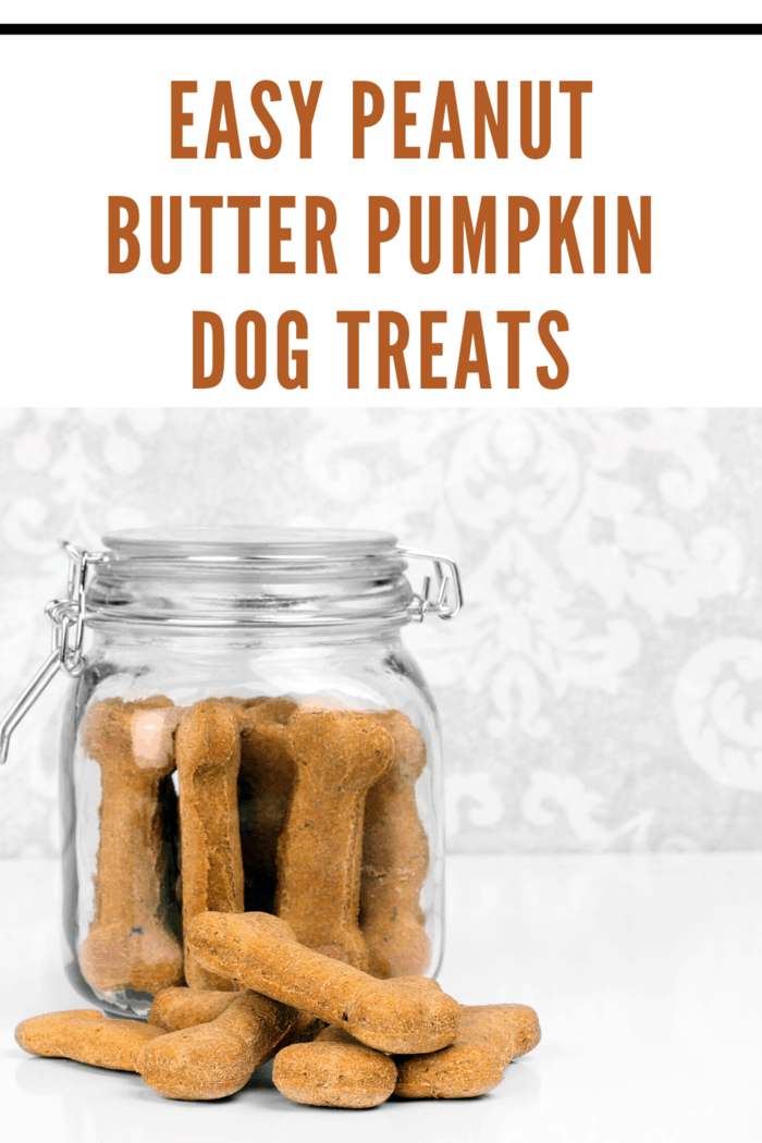 These peanut butter dog treats fare simple to make and only contain four ingredients, which you'll probably already have lying around your house.