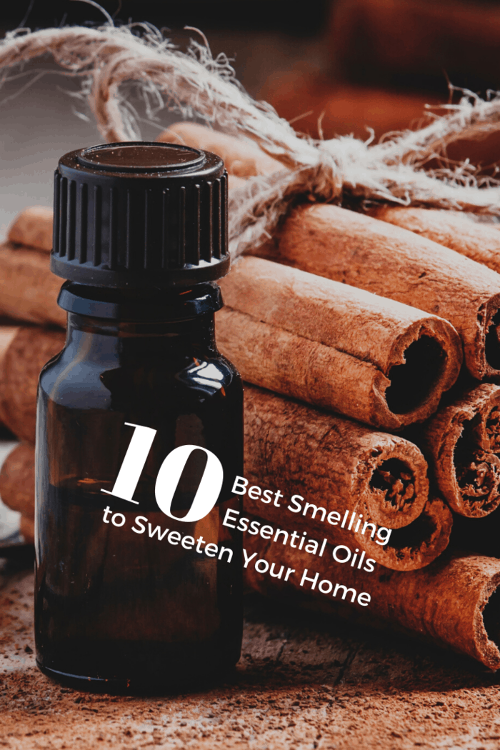 Cinnamon is the perfect essential oil to get you in the mood for the holidays, build your immune system and is ranked one of the best smelling essential oils to sweeten your home