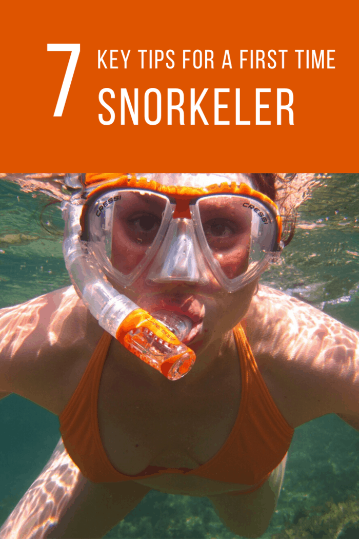 First-Time Snorkeler Simply float where the ocean takes you, and lightly kick your feet when you need to, letting the water do all of the hard work.