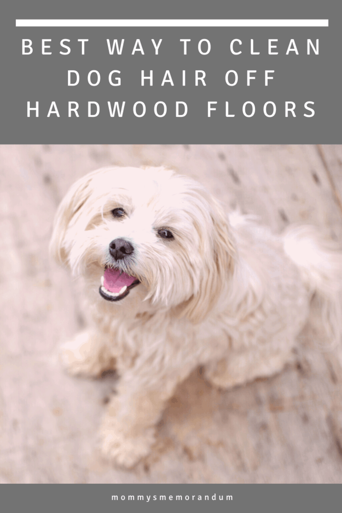 To help you out of your predicament, we're going over some tips for the best way to clean dog hair off hardwood floors without breaking your back.