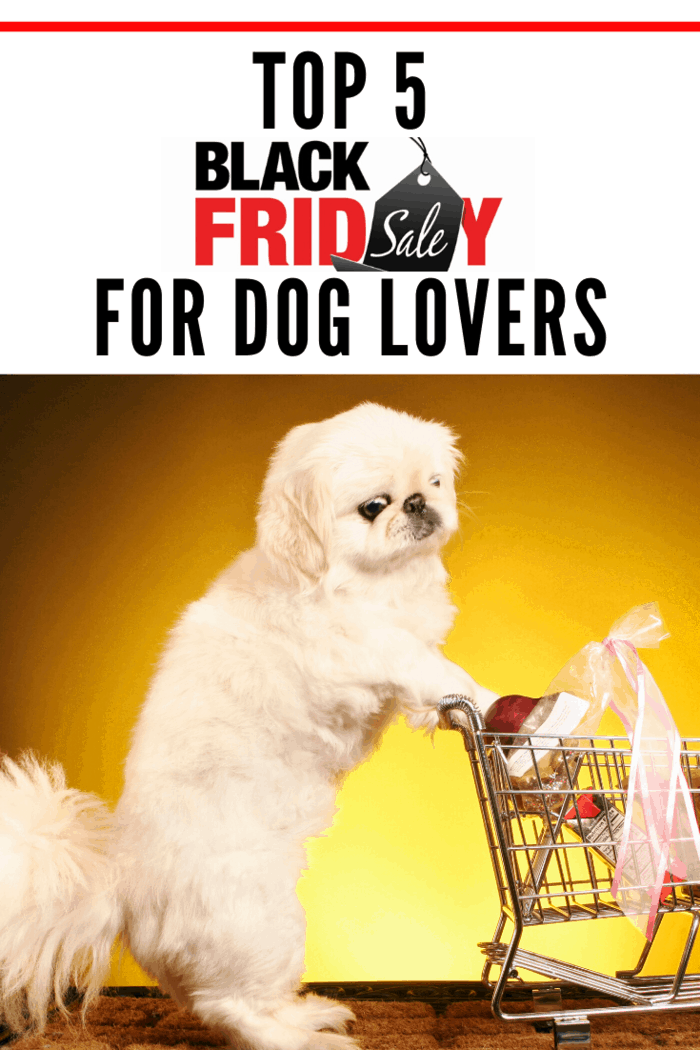 As always, the most profitablepet dealson Black Friday will be presented in online retailer stores.